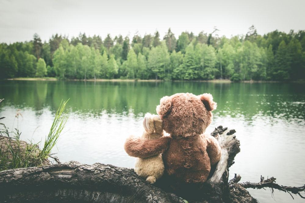 Ours en peluche lapin lac